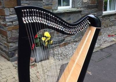 eala-irish-harp-in-black-lacquer-gallery-003