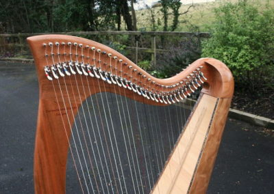 eala-irish-harp-in-cherry-gallery-003