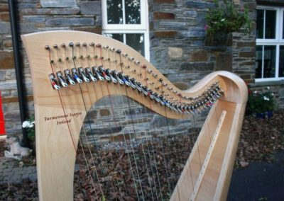 eala-irish-harp-in-maple-gallery-004