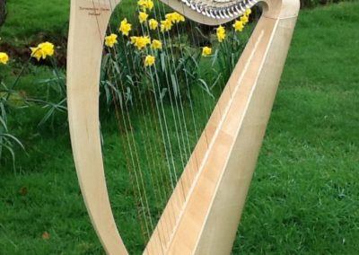 eala-irish-harp-in-maple-gallery-006