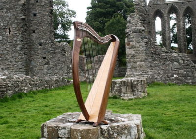 eala-irish-harp-in-walnut-gallery-004