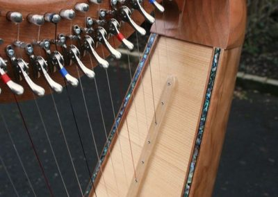 eala-irish-harp-in-cherry-gallery-001