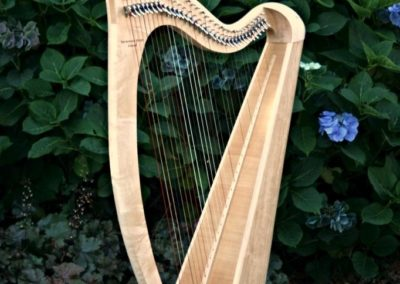 eala-irish-harp-in-maple-gallery-003