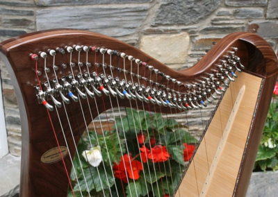 eala-irish-harp-in-walnut-gallery-001