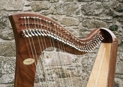 eala-irish-harp-in-walnut-gallery-005